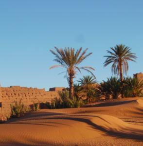 marocco viaggio nozze